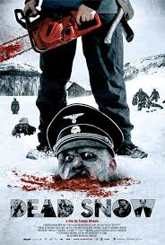 http://tbn3.google.com/images?q=tbn:Ey9zqdWwBiOyFM:www.iwatchstuff.com/2009/01/13/dead-snow-poster.jpg