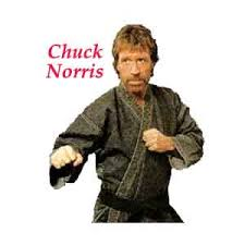 B-Day! - Page 2 Chuck_norris_random_fact_generator_6_3957_2224_image_2578