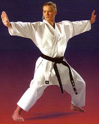 external image adidas_karate_elite_l.jpg