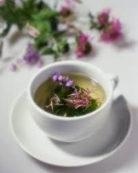 external image tea,%2520herbal%2520tea,%2520green%2520tea.jpg
