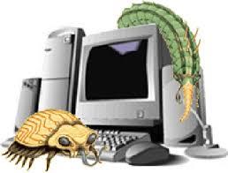 http://tbn3.google.com/images?q=tbn:b2-vOL1r00KvfM:http://www.tuvantinhoc.osc.vn/UserFiles/UploadFiles/virus/IM_Virus46.jpg