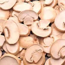 پرورش قارچ خوراکی