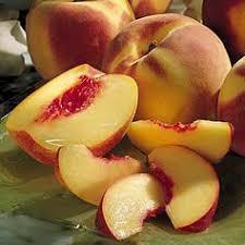 ملف كامل عن عمل المربى peach.jpg
