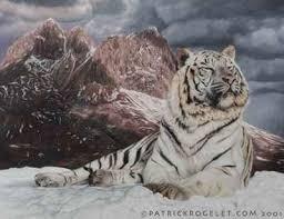 Le_tigre_blanc