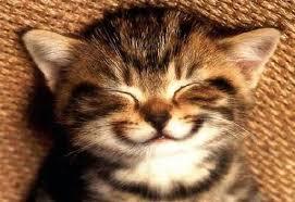 إبتسم أنت على قيد الحياه