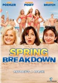 FILM EN LIGNE Spring Breakdown